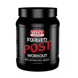 FORGED POST WORKOUT 600 GR